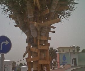 Mantenimiento de árboles