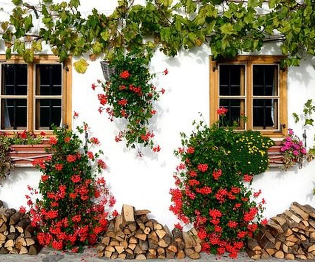 Pintura de fachadas, ¿qué hay que tener en cuenta?