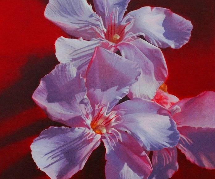 flores, oleo sobre tela, 46x38cm. 1100€