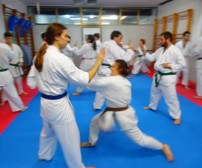 Karate en Sant Gervasi