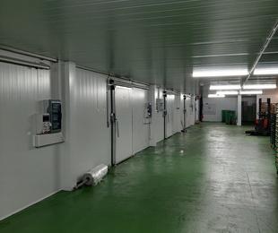 Salas de cultivo de champiñón en Ledaña
