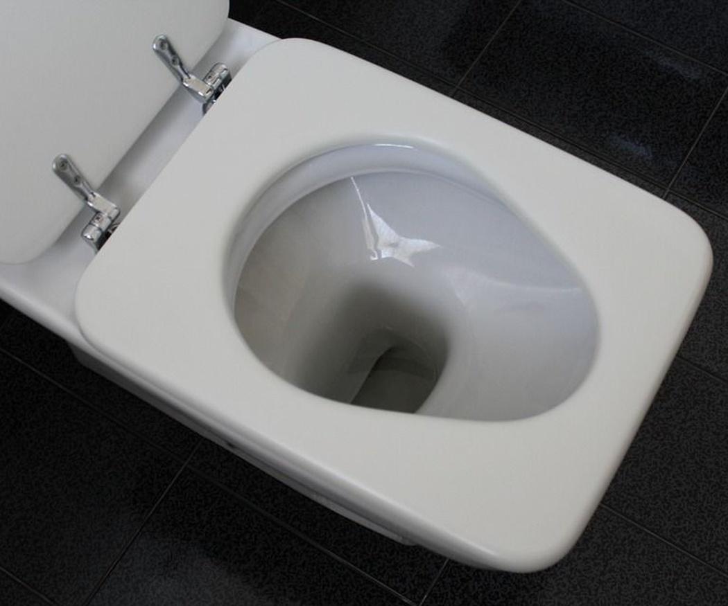 Cosas que dañan al medio ambiente si las tiras por el váter