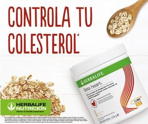 Control de colesterol