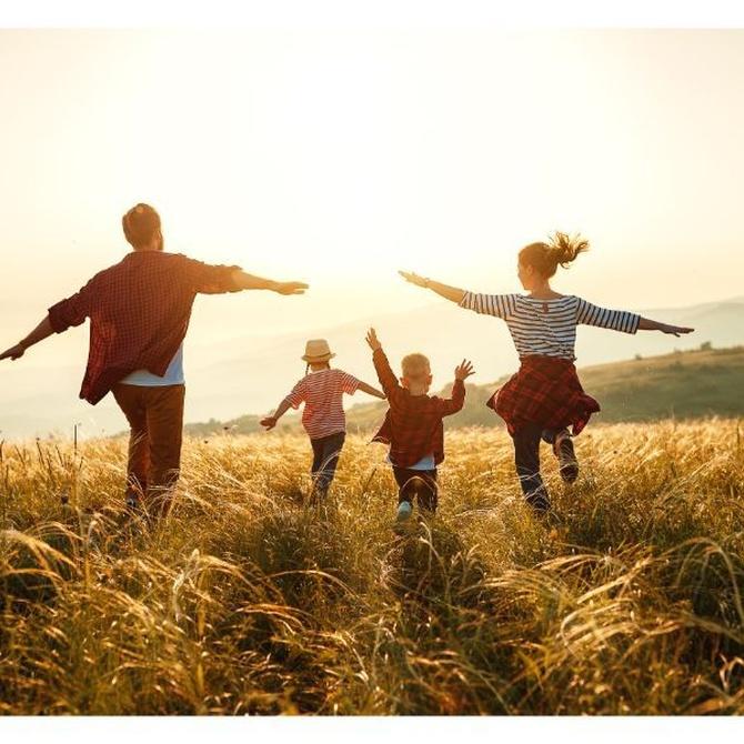 ¿Qué es el derecho de familia?