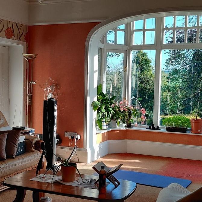 Olvídate del gotelé y moderniza tus paredes con un alisado de calidad