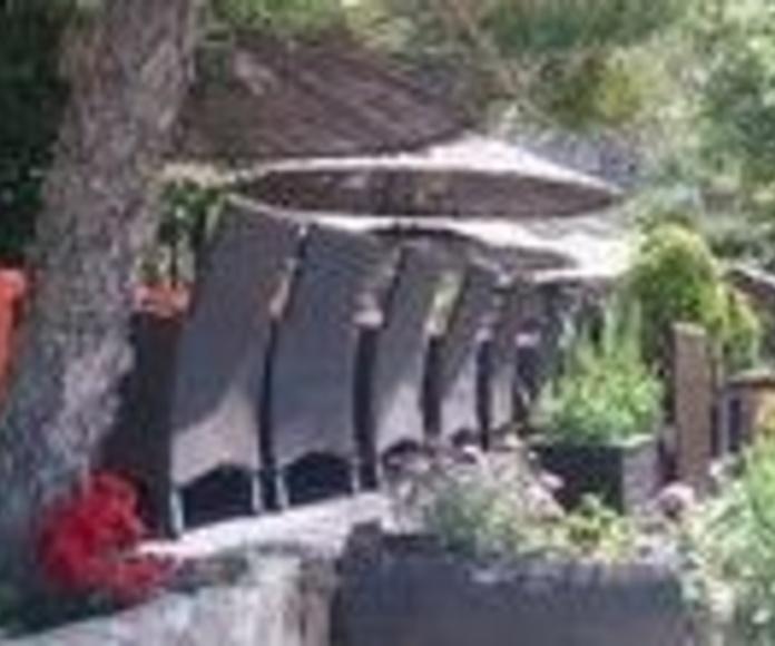 Terrazza junto al mar: Productos y servicios de Restaurante La Barraca