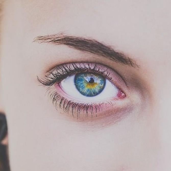 La importancia de las cejas en la estética