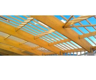 Reparación de goteras: Servicios de Teula i Fusta