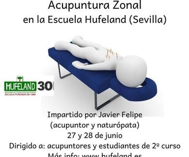 Seminario de Acupuntura Zonal