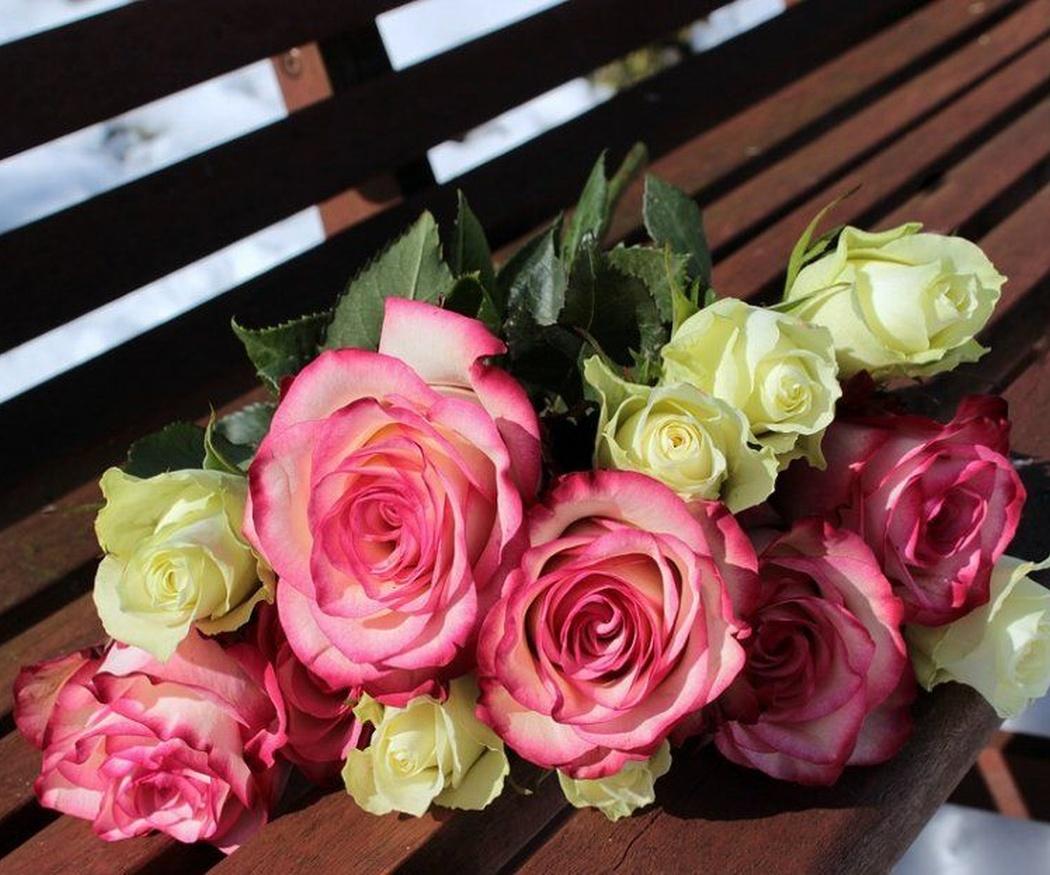 El lenguaje de las rosas
