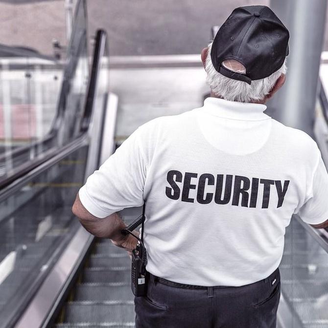 Armas reglamentarias del vigilante de seguridad