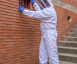 Especialistas en higiene ambiental y control de plagas en Barcelona