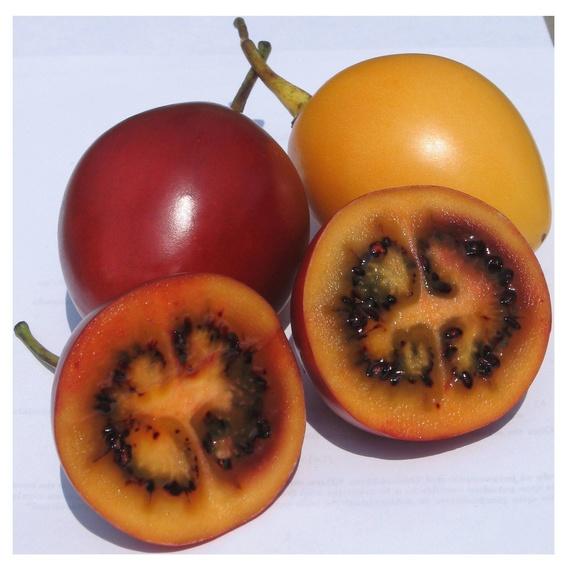 Tomate de árbol: Combinados de Guarapito