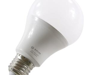 Bombillas y lámparas LED