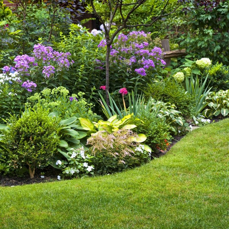 Productos y servicios: Servicios de Jardinería Belardi, S.L.