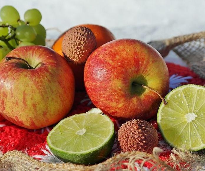 Transporte de frutas: Servicios de Grupo Montiel Logística