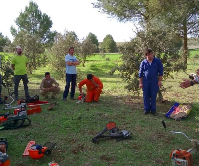 CURSOS: Servicios de Agroambiental Bullaque