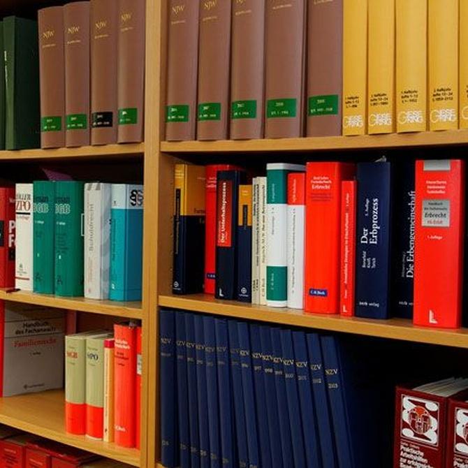 ¿Qué es un asesor jurídico?