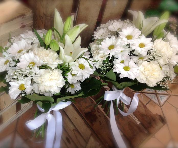 Bouquets para damas de honor: Catálogo de Flores Maranta