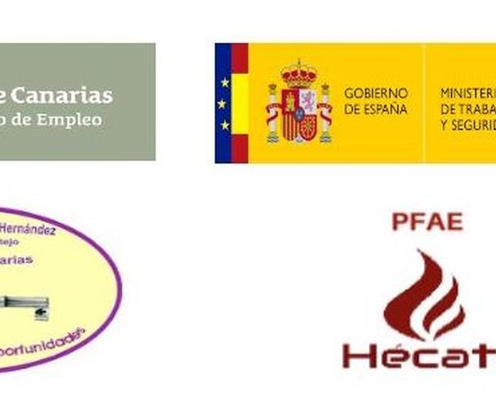 los 4 elementos: Proyectos y Servicios de Asociación Domitila