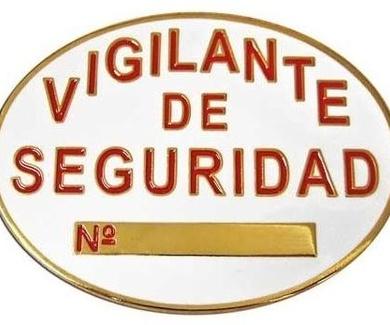 Curso Oficial de Vigilante de Seguridad