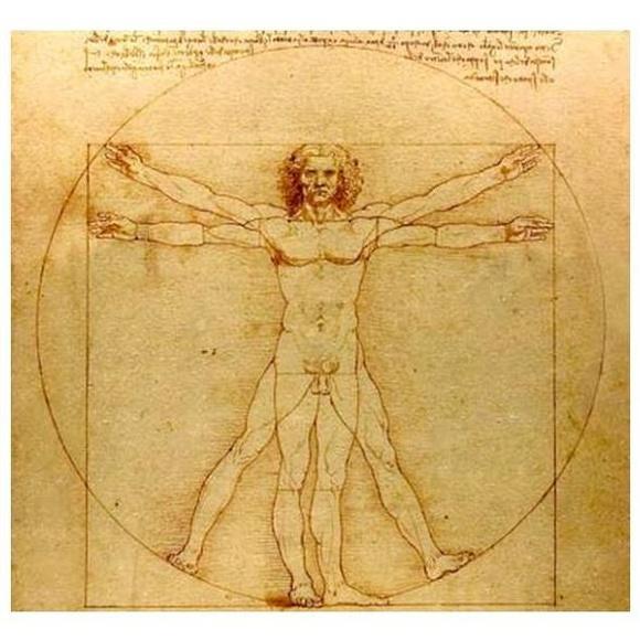 Masaje terapéutico y deportivo: Servicios de Fisiovitae
