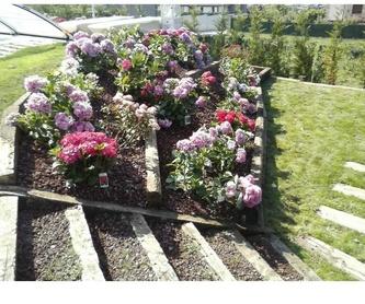 Excavaciones: Diseños de jardines de Espacios verdes del Norte