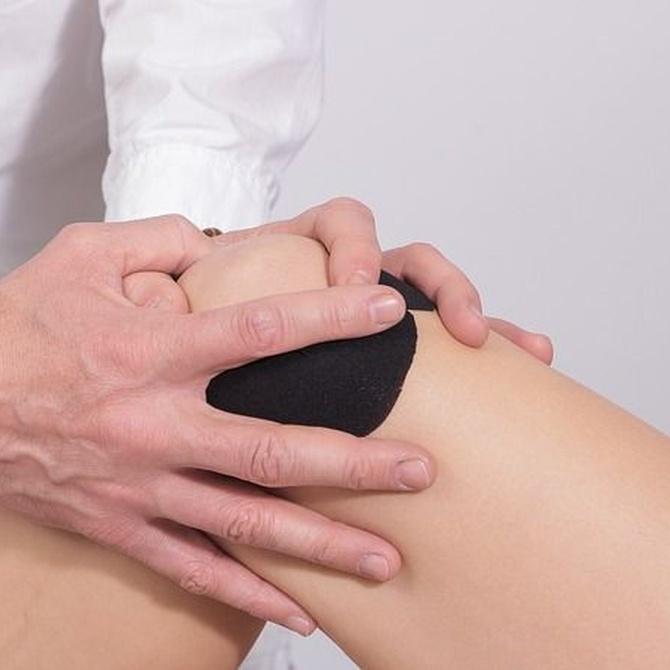 ¿Cada cuánto tiempo tenemos que acudir al fisioterapeuta?