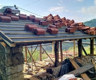 Canalón en Hórreo asturiano: ¿Qué hacemos? de JLT Canalones
