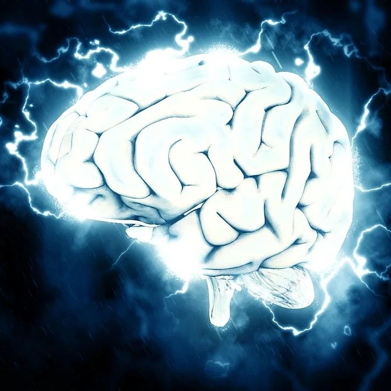 Atención neuropsicológica a domicilio: Servicios de Centre de Dia Vincles