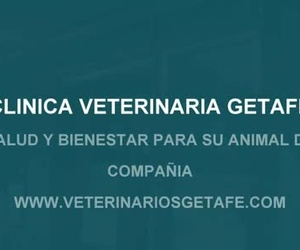 Clínica Veterinaria Getafe  www.veterinariosgetafe.com