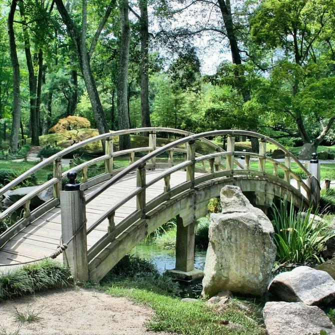 ¿Conoces los tipos de jardines que existen?