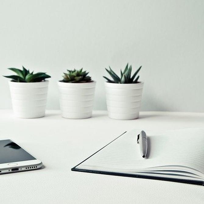 5 beneficios del orden y la limpieza en un coworking