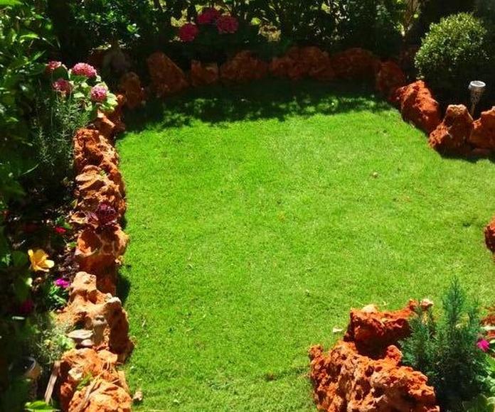 Jardinería: Servicios de Servicios Integrales Marbella