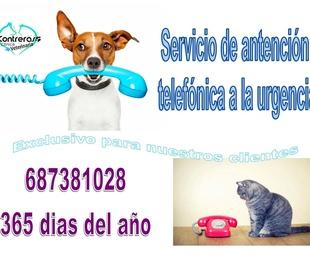 Nuevo servicio de atención telefónica a la urgencia