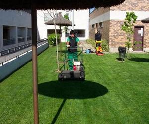 Endoterapia para plantas y árboles sin toxicidad