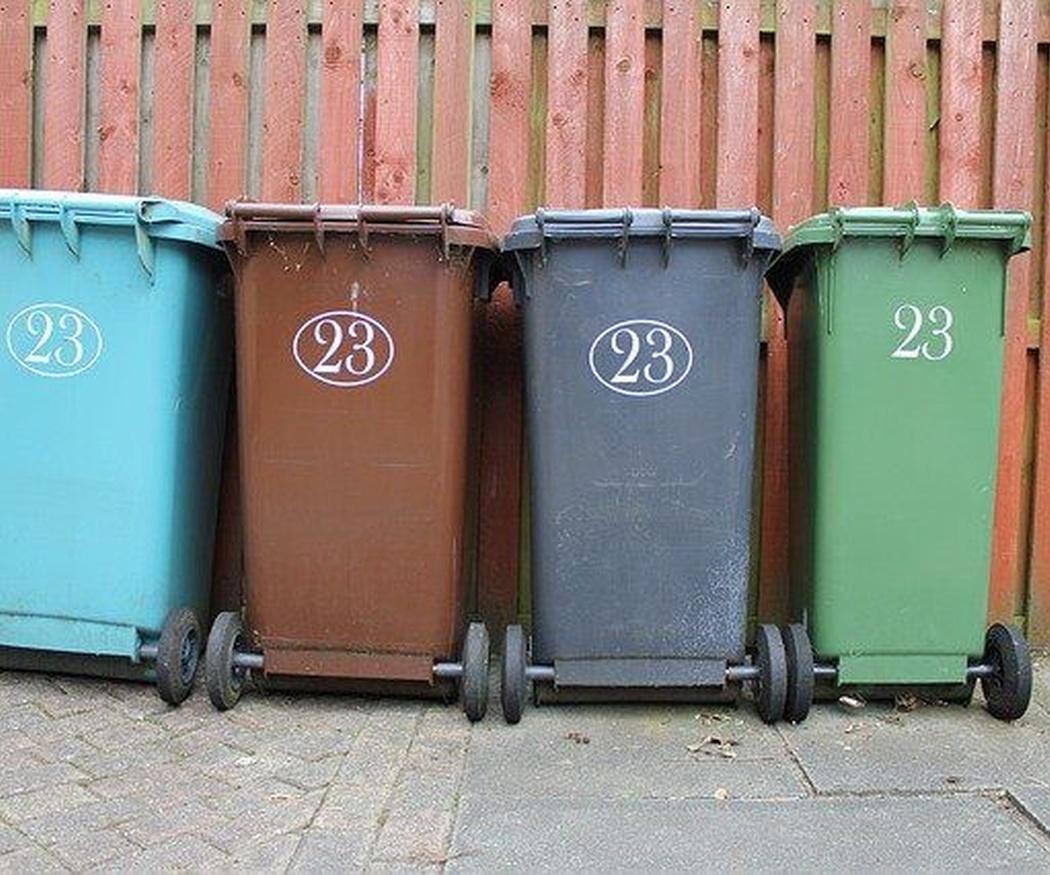 Los nuevos contenedores marrones para los residuos orgánicos