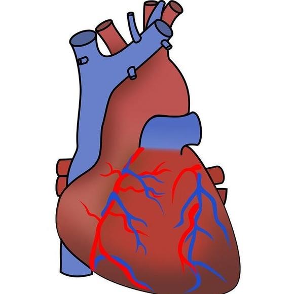 Cardiólogos Gijón