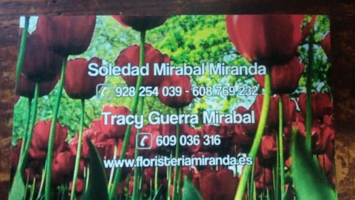 Nuestros servicios: Productos y servicios de Floristería Miranda