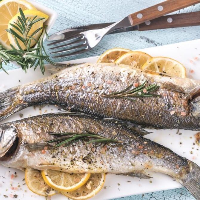 ¿Qué pescados prefieres?