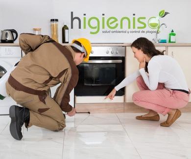 Fumigar piso cucarachas Alicante