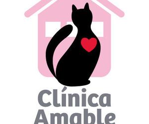 """Certificado """"Clínica Amable con los Gatos"""""""