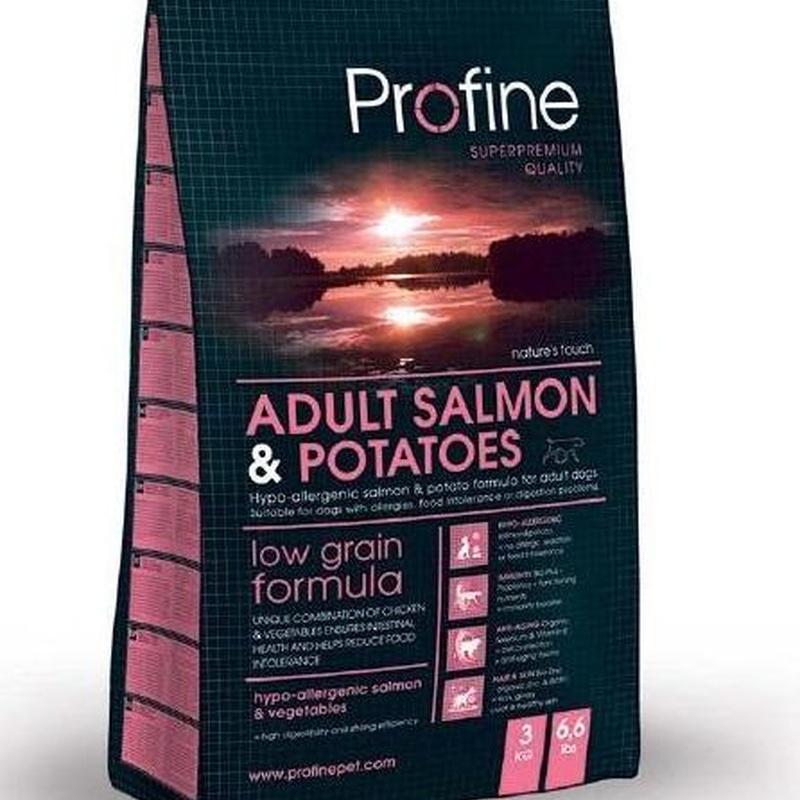 Profine Adult Salmón & Potatoes: Productos y Servicios de Narval Mascotas