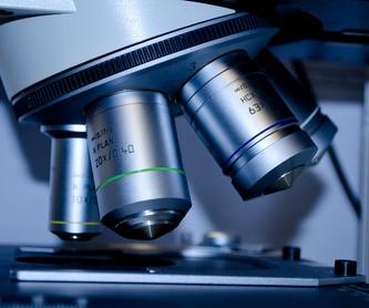 Medicina interna: Nuestros servicios de Clínica Veterinaria Lovets