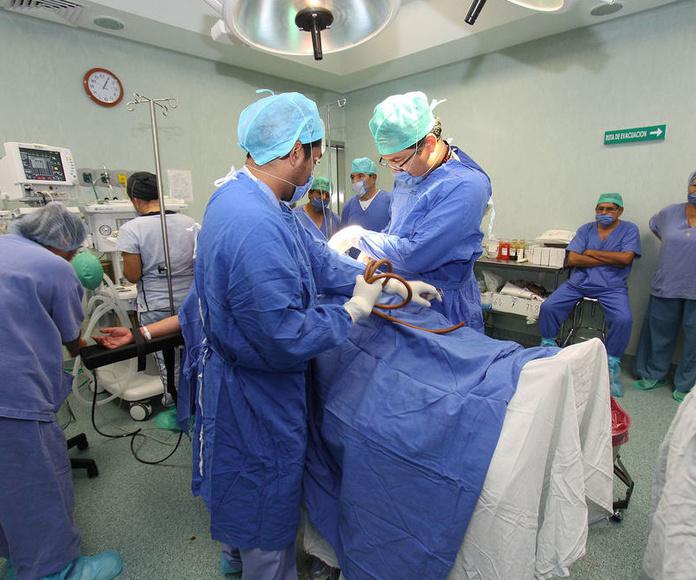 Cirugía reconstructiva : Servicios de Dr. Ángel Roncalés Badal