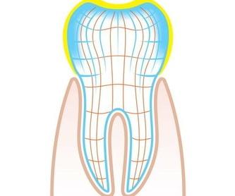 Ortodoncia adultos : Servicios  de Lorena Mª Sánchez Liñán