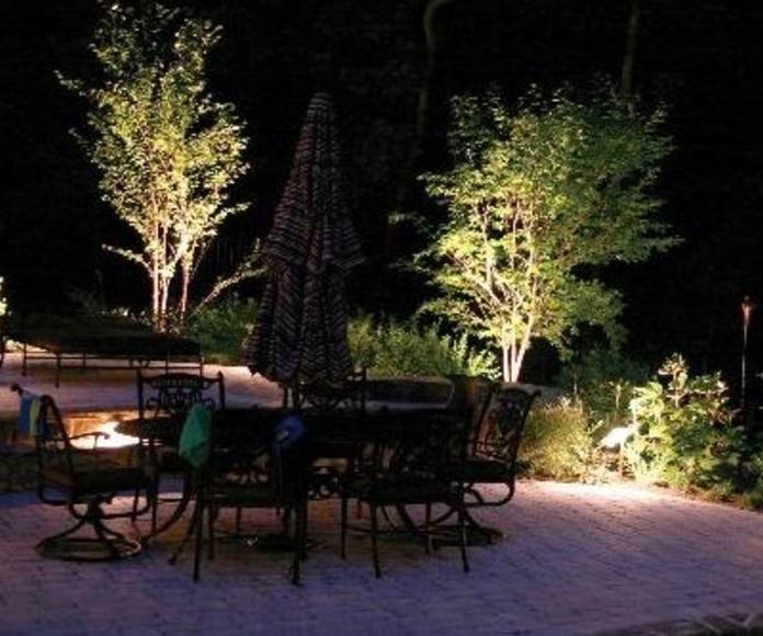 ILUMINACION DE PLANTAS CON LED CALIDO.