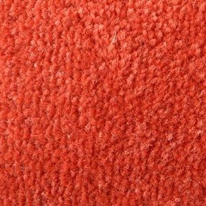Cómo limpiar tus alfombras si tienes alergia