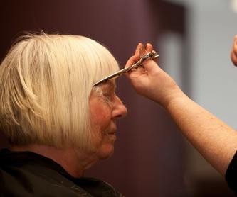 Servicio de peluquería a domicilio: Servicios de KLASIX