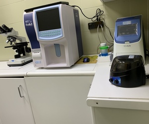 Laboratorio Clínica Veterinaria Las Musas